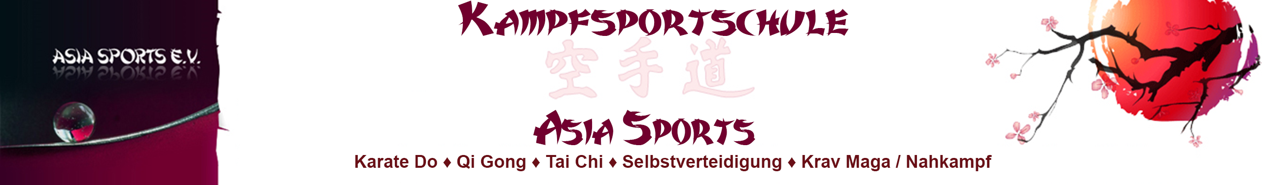 Kampfsportschule Asia Sports - Karate / Krav Maga / Nahkampf / Selbstverteidigung / Taekwon-Do / Kickboxen